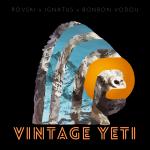 VINTAGE YETI | La fonte des neiges en musique par ROVSKI